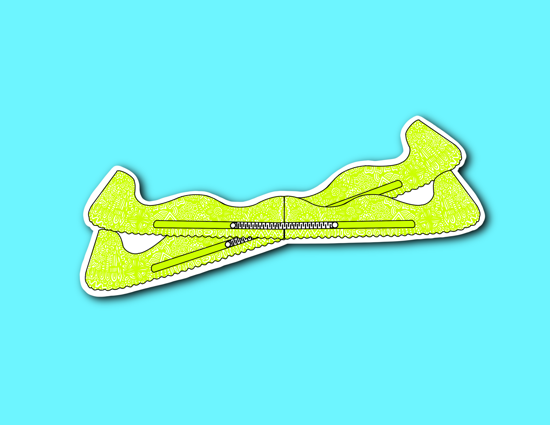 Picture of Light Green Skate Guards Sticker *PRE-ORDER*