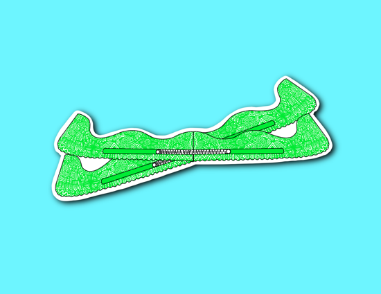 Picture of Green Skate Guards Sticker *PRE-ORDER*